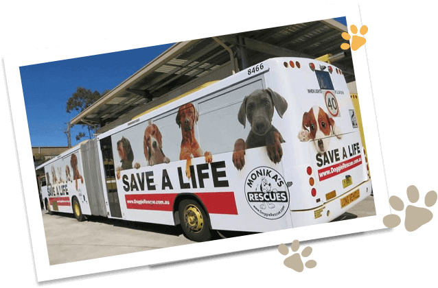 Doggie-Rescue-Save-a-Life-Bus